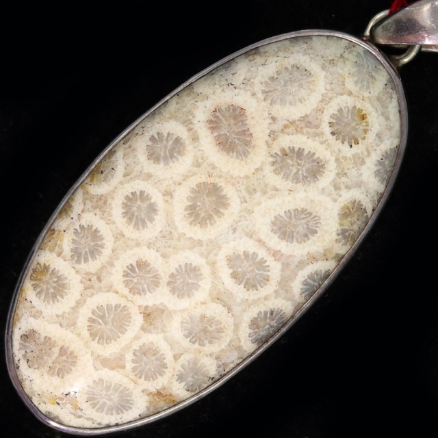 65.10 CTS CORAL FOSSIL PENDANT-INDONESIA [SJ4740]