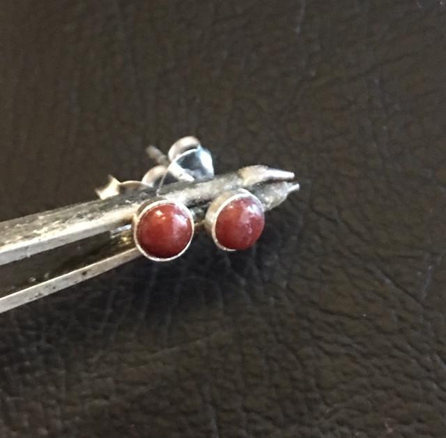 Cute Carnelium  Earrings AMB 904