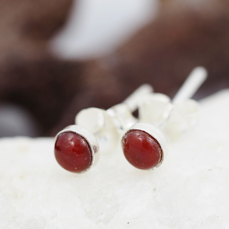 Cute Carnelium  Earrings AMB 905