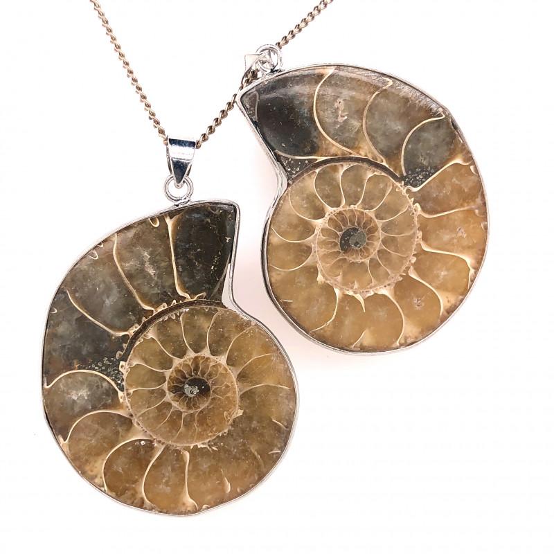 Ammonite Fossil Pendant [2 PCS] BR 338