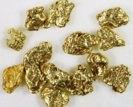 One Gram 10 screen Yukon Gold nuggets in Case LGN 1410