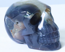 1.60 Kilo Crystal Geode on jasper hand carved Skull WS 511