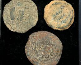 Original as found, 3 Judean  Bronze  coins Found Holy land CP 166