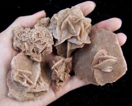 223Grams parcel 5 desert rose GG 2066