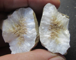 245 Cts Australian Fossickers Find PPP 272