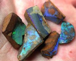 Boulder Rough Opal