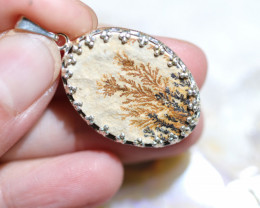 Natural Million years  fern fossil Pendant NA 317