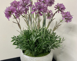 Purple Flower in Pot Code FLWP2