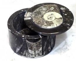 Ancient Fossil Orthoceras Jewellery Box