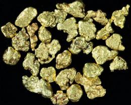 One Gram 14 screen Yukon Gold nuggets LGN 1395