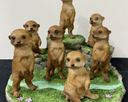 Treasure Box of Cute Meerkats on display 36pcs  Code MEERDISX