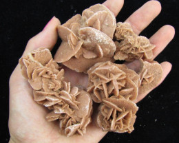 278Grams parcel 5 desert rose GG 2058