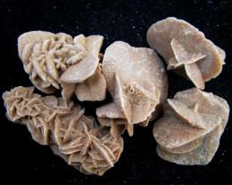 178Grams parcel 5 desert rose GG 2065
