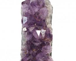 1.2kg Natural Amethyst Crystal Lamp DS440
