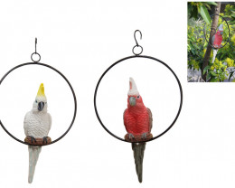 Galah & Cockatoo In Ring  4pcs  code GALRING