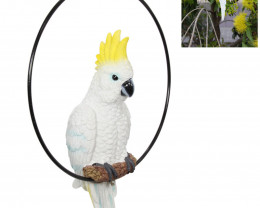 Treasure Box of Cockatoo In Ring 2pcs   Code COCKRING