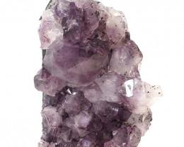 1.56kg Natural Amethyst Crystal Lamp DS480