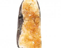 2.2kg Natural Citrine Crystal Lamp DS510