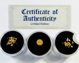 TREASURES OF THE WORLD GOLD COIN SERIES 0 9-100 (TWG)