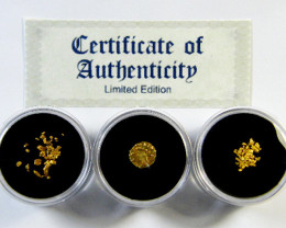 TREASURES OF THE WORLD GOLD COIN & ALLUVIAL  SERIES 2-100 (TWG)