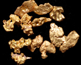0.14 Grams - ONE NUGGET ONLY - Australian Kalgoorlie  Gold Nugget CCC 1337