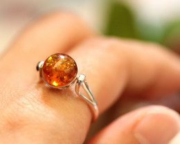 Natural  Baltic  Amber Sterling Silver Ring size N  code GI 707