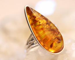 Natural  Baltic  Amber Sterling Silver Ring size L  code GI 800
