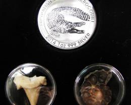 Silver Salt Crocodile with Ammonite & Shark tooth CC127