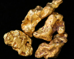 0.46-0.48  Grams - ONE NUGGET ONLY -  Kalgoorlie Gold Nugget LGN  1841