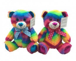 25cm  Set 2 Rainbow Plush Bears   code C-BEARRAPL