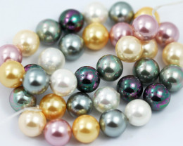12 mm Shell Pearl colour Strand  AHA 646