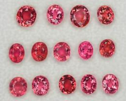Tourmaline 10.00 Cts 14pcs 5.27x4.50mm Natural Pink  Gemstone