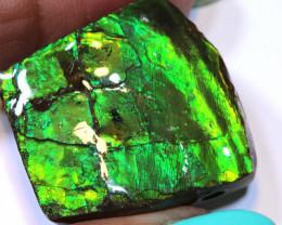 86.50- AMMONITE  PENDANT DRILLED  RJA -1618  Rarejewelry