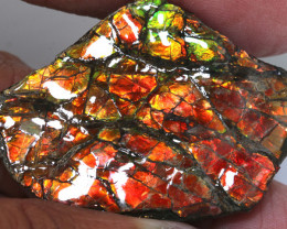 89CTS AMMOLITE SPECIMEN  RJA-1629   Rarejewelry