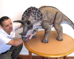 Massive  Realistic Triceratops Dinosaur