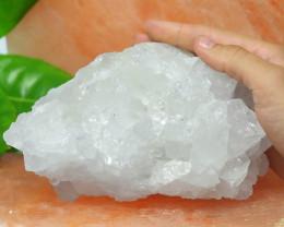 1.35 Kilo Crystal Rock terminated Points Specimen  CF 507