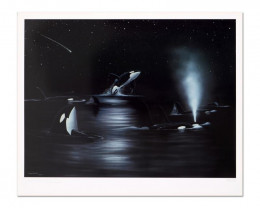 Orca s  Starry NightLimited Edition Lithograph .Wyland