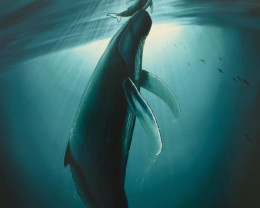 The First Breath, Limited Edition Lithograph,Wyland