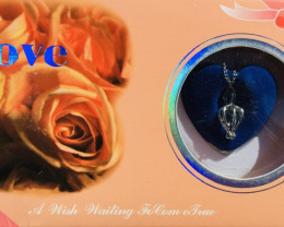 Gift box  Shell with pendant necklace n Real Pearl-BR 2486