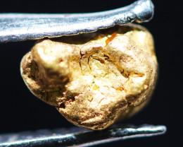ONE NUGGET  to  0.52 Grams Australian Kalgoorlie Gold Nugget CH169