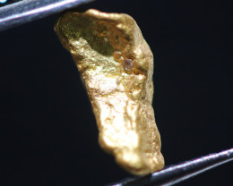 ONE NUGGET  to 0.53  Grams Australian Kalgoorlie Gold Nugget CH171