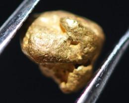 ONE NUGGET  to  0.65 Grams Australian Kalgoorlie Gold Nugget CH175