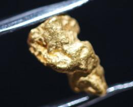 ONE NUGGET  to 0.62  Grams Australian Kalgoorlie Gold Nugget CH177