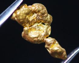 ONE NUGGET  to 0.60  Grams Australian Kalgoorlie Gold Nugget CH182