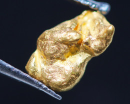ONE NUGGET  to 0.61  Grams Australian Kalgoorlie Gold Nugget CH183