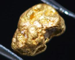 ONE NUGGET  to 0.64  Grams Australian Kalgoorlie Gold Nugget CH184