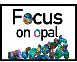 focusonopal