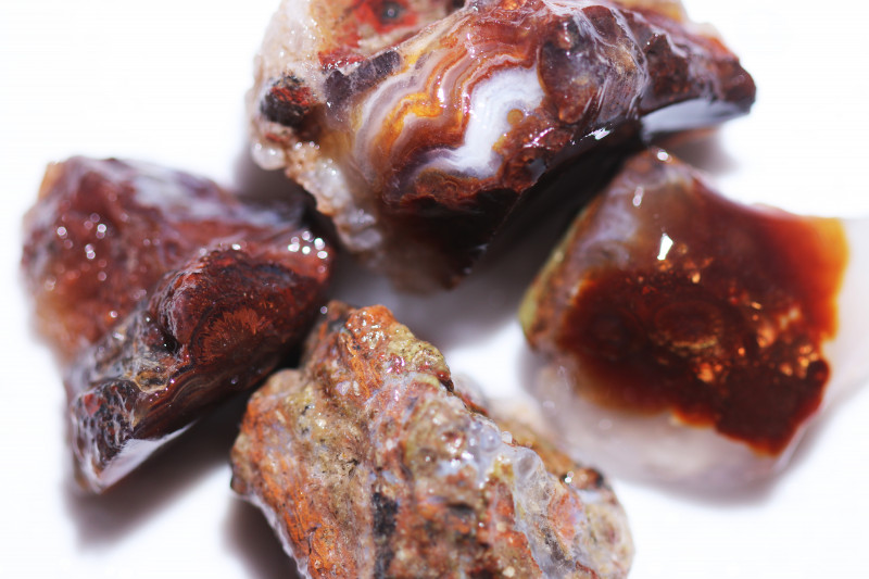 331Cts Four  Fire Agate rough Specimens from Mexico   CH 723