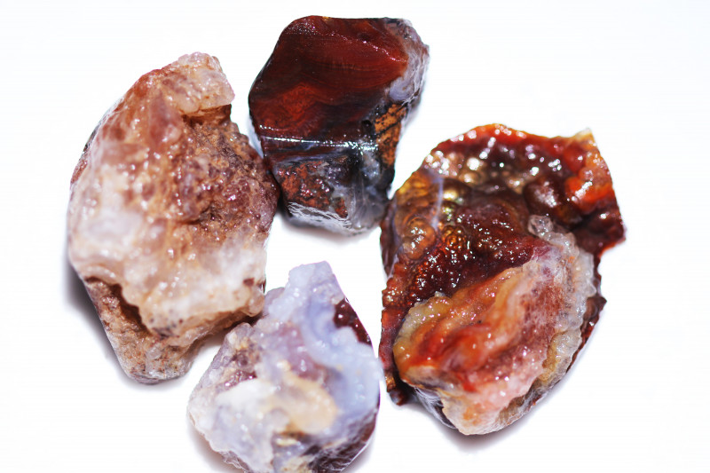 263Cts Four  Fire Agate rough Specimens from Mexico   CH 725