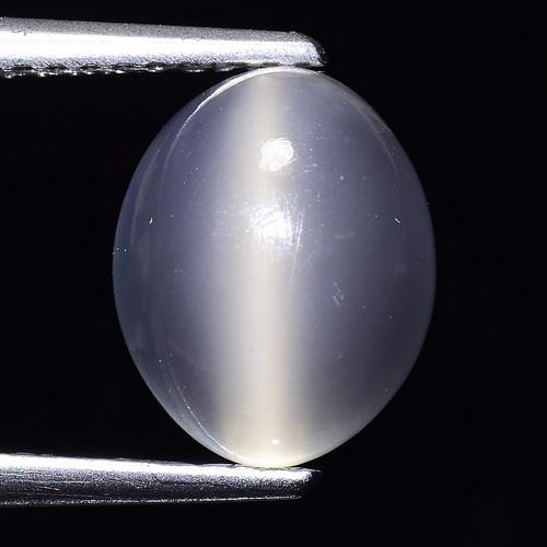 3.06Ct Natural Moonstone Cat's Eye Amazing Gemstone. MS 47